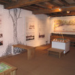 The history of Sarehole Mill display