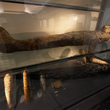 Mummies in the Egyptian gallery