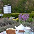 Tea and cakes in the garden at Blakesley Hall