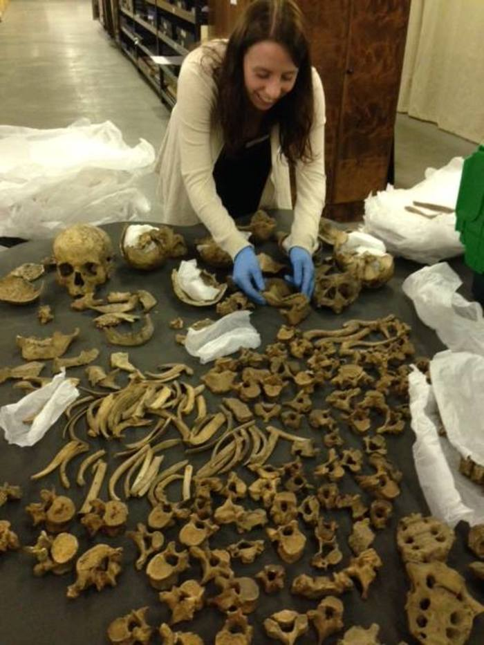 Emma working with the human remains collection