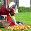 Collecting apples at Blakesley Hall