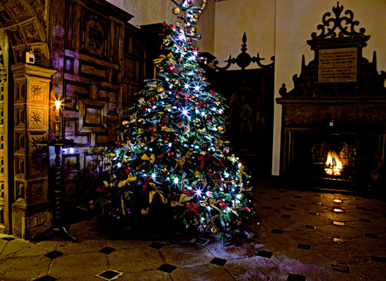 Aston hall christmas03