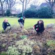 Gardening volunteers at Soho House