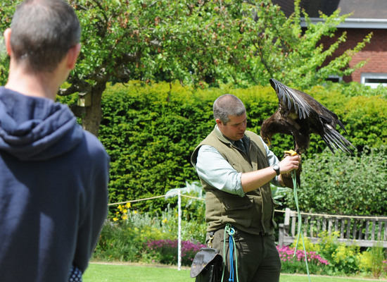 Blakesleyhall034%20falconry%20crop