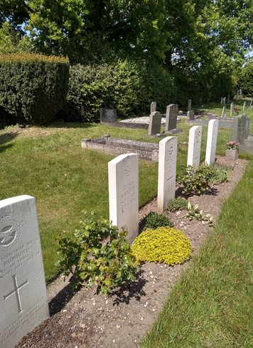 Series of white grave headstones