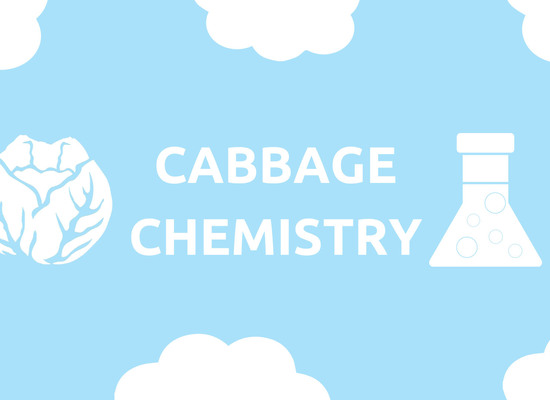 Cabbage%20chemistry%20 %20screen%20copy